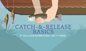 Guide-to-Catch-and-Release-Fishing-If-You-Love-Something-Set-it-Free