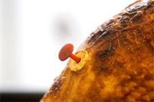 turkey-timer_12