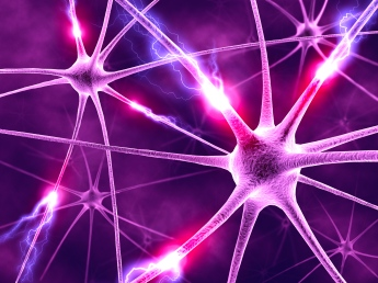 neurons1.jpg