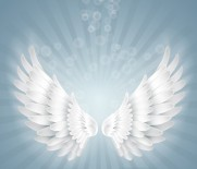 angel-wings