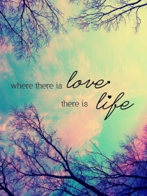 107042-Where-There-Is-Love-There-Is-Life