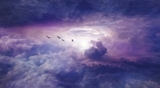 awesome-birds-clouds-color-Favim_com-2755194