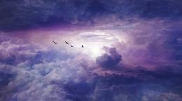 awesome-birds-clouds-color-Favim_com-2755194