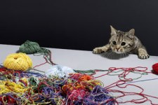 what-is-string-theory