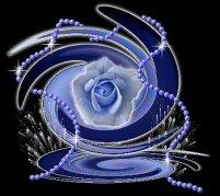 bluerosepearls