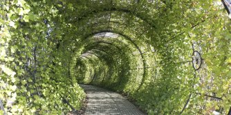 England, The Alnwick Garden, The Poison Garden, Tunnel