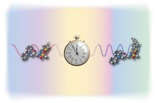 1-smallmolecul.jpg