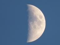 moonhalf