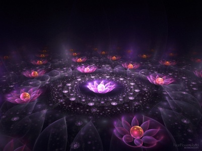 Lotus-of-Light-fantasy.jpg